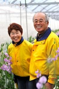 スイトピー栽培農家の清幸農園ご夫婦